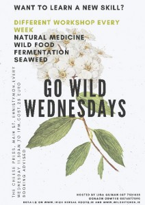 Go Wild Wednesdays Poster jpeg